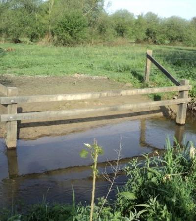 La gestion des abords de cours d'eau dans une prairie avec des chevaux
