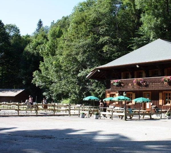 Morzine Equitation, un centre équestre de montagne labellisé EquuRES