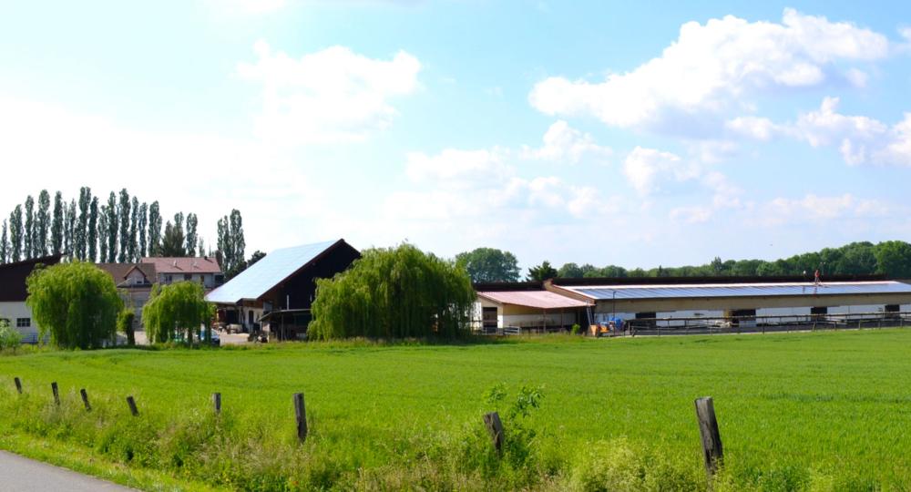 L'écurie du Neuhof, en Alsace, labellisée EquuRES à l'échelon Progression