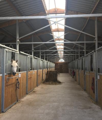 Quelle ambiance dans les lieux de vie des chevaux en intérieur ?