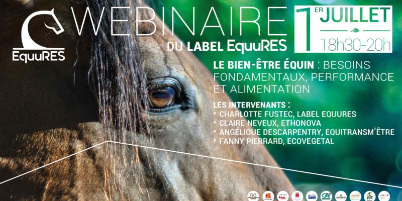 Le label EquuRES organise deux évènement autour du bien-être du cheval début juillet
