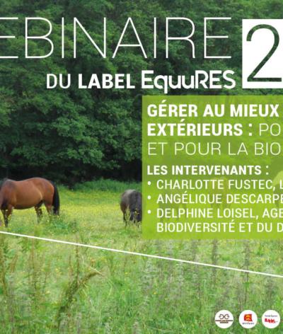 Webinaire label EquuRES – Gérer au mieux les espaces extérieurs : pour les chevaux et pour la biodiversité