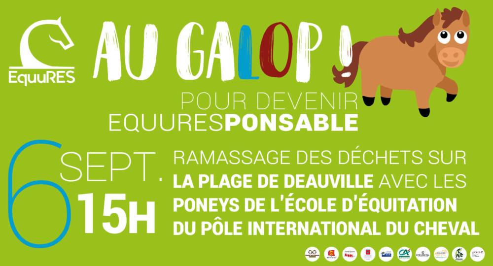 Journée ramassage des déchets – 6 octobre à 15h à Deauville – Semaine européenne du développement durable